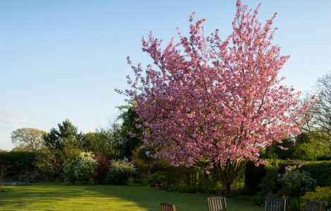 Tuinmeubilair van steigerhout